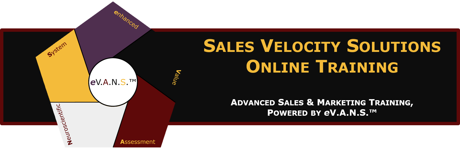 Sales Velocity Solutions Online Training Platform